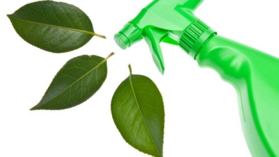 Cách làm chất tẩy rửa từ thiên nhiên